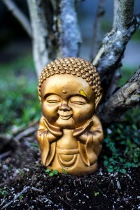 buddha-ray-phung