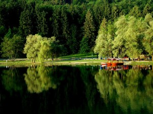 lake-bled-reflections-barry-price