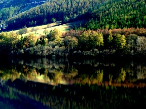 lake-vyrnwy-mid-wales-barry-price