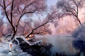 beauty-of-a-frosty-morning-vlad-sokolovsky