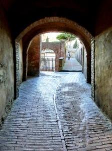 siena-tuscany-steve-mcglannan